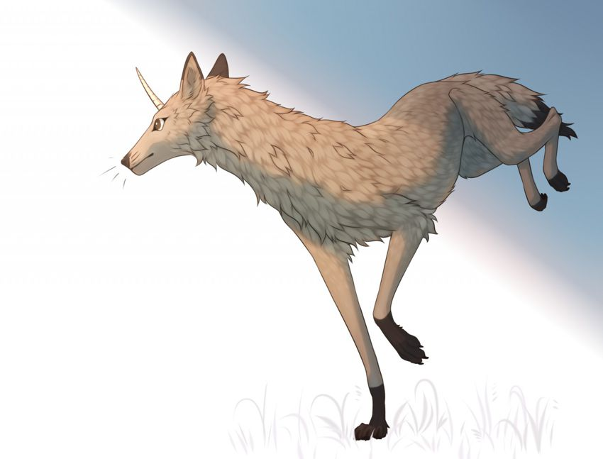 Invar feral drawn by Halijies on FA 1